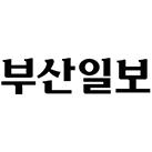 '부경ㆍ부산ㆍ경북ㆍ경상대 학생부종합전형 운영은 어떻게?'