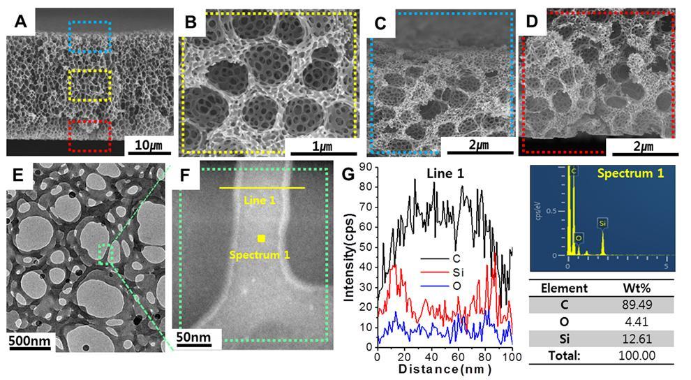 A~D는 다공성 막 단면을 주사전자현미경으로 촬영한 이미지다. 큰 기공과 작은 기공이 공존하는 형태를 볼 수 있다. 또한 이 구조가 대칭을 이룸을 알 수 있다. E~G는 다공성 막 단면을 투과전자현미경으로 촬영한 이미지다. 모든 기공의 표면에 표면개질제의 성분인 실리콘이 위치함을 확인할 수 있다. F 그림에서 기공 테두리 가장자리에 보이는 하얀색이 실리콘이다. 리튬이온배터리 전해질에서 나온 불순물이 이 부분에 흡착된다.
