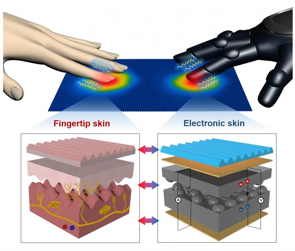 인공전자피부는 인체 손가락 피부 구조와 기능을 모사해 다양한 물리적 신호를 감지한다. 이 그림은 로봇에 인공전자피부를 적용할 수 있다.
