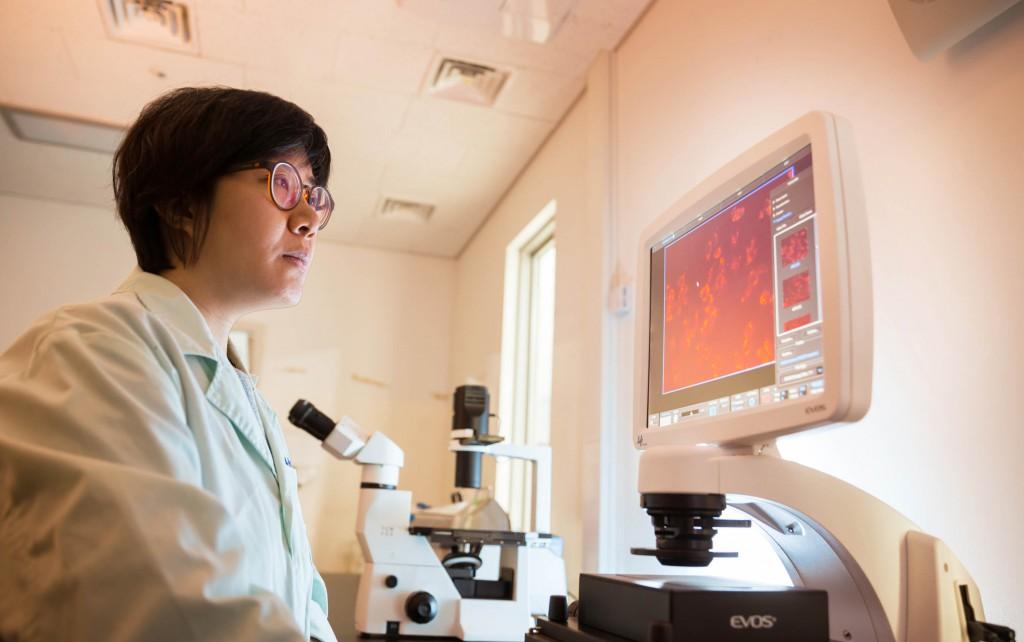 임미희 교수가 자신의 연구실에서 실험 데이터를 살펴보고 있다. 그녀는 다른 사람들이 가능성이 낮다고 보는 연구에 용감하게 뛰어들어 새 길을 개척하고 있다. | 사진: 안홍범