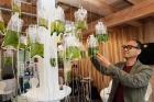 녹조류-나무-조형물을-살펴보는-조재원-UNIST-교수도시환경공학부.jpg