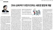 DNA 상해 복구 과정 타깃하는 새로운 항암제 개발