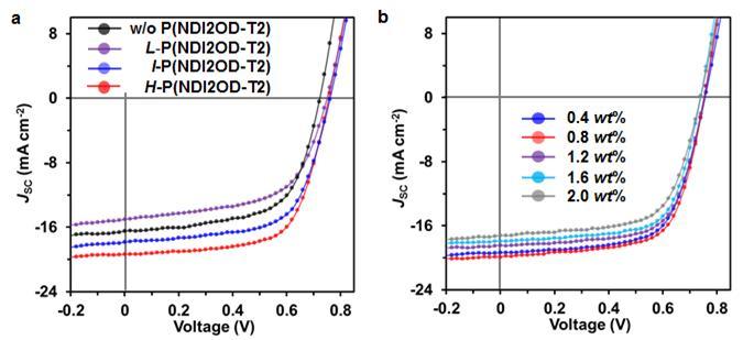 고분자 첨가제의 (a)분자량과 (b)첨가 비율에 따른 유기 태양전지 효율 비교. 고분자량과 0.8 wt%의 첨가량에서 가장 높은 효율 (빨간선)을 보인다는 걸 알 수 있다.