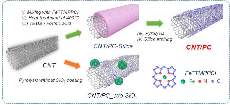 고성능 포피린 탄소층이 코팅된 탄소나노튜브(CNT/PC) 촉매 합성 모식도