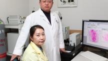 혈관과 뼈 형성을 촉진하는 단백질 발견