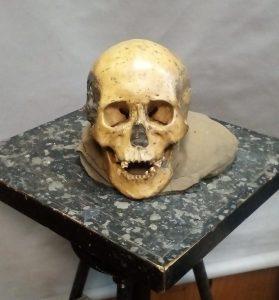 악마문 동굴에서 발굴된 사람 머리뼈. 이 유골에서 DNA를 채취하진 않았지만 이번 연구에 쓰인 유골과 같은 시대의 것이다. | 사진: Elizaveta Veselovskaya