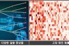 이승철-교수-기고_Figure-5.jpg