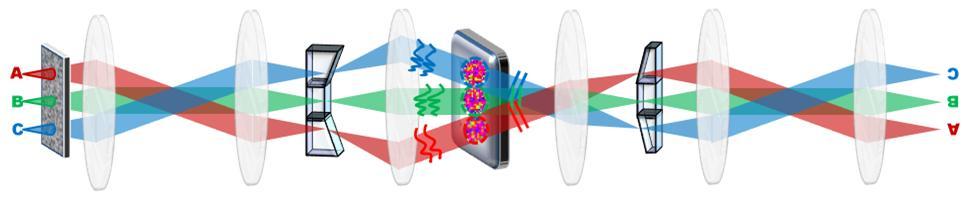 다개구 적응광학 현미경의 모식도. 개구면을 분리할 경우 위치마다 다른 렌즈를 이용해 관찰하는 효과를 얻을 수 있다.