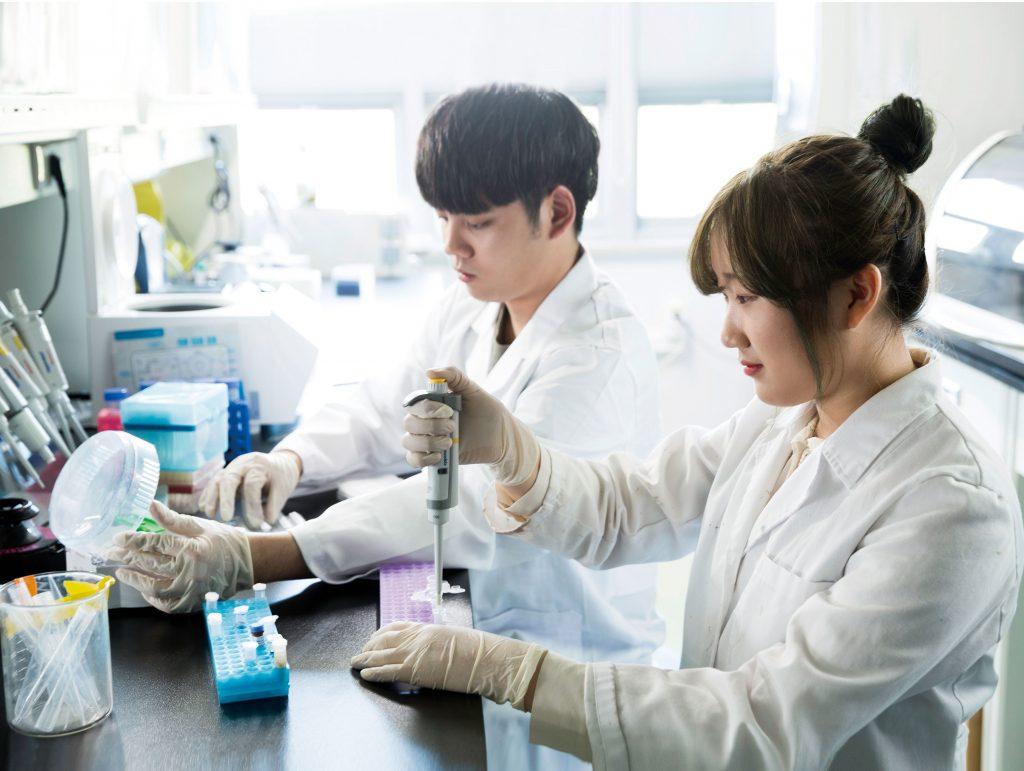 1학년이지만 이창수 교수팀에 합류한 서동은 학생이 실험에 열중하고 있다. | 사진: 안홍범