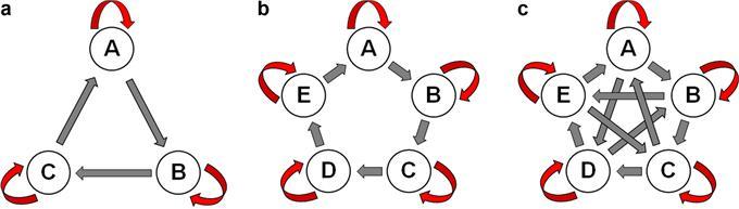 왼쪽부터 가위바위보, 확장된 가위바위보, 가위바위보도마맴스팍 게임이다. 붉은색은 내부경쟁을 뜻한다.