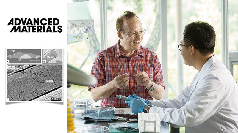 투과전자현미경으로 생체 내 고분자 움직임을 실시간으로 관찰하는 데 성공한 스티브 그래닉 교수팀. | 사진: 안홍범, 디자인: 박혜지