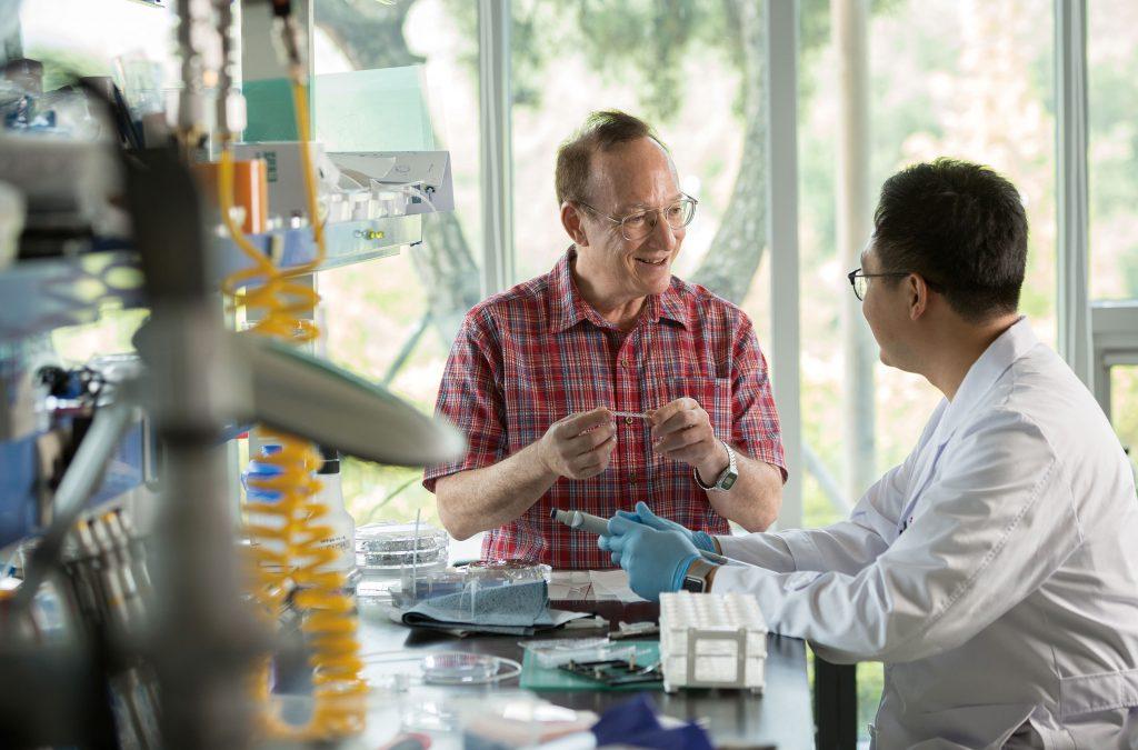 그래닉 교수가 103동 1층에 마련된 실험실에서 동료 연구자와 대화하고 있다. 서로 다른 전공을 가진 과학자들이 모여 융합 연구를 하는 것이 첨단연성물질연구단의 장점이다. | 사진: 안홍범