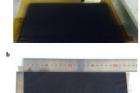 권태혁-교수팀_연구그림5.jpg