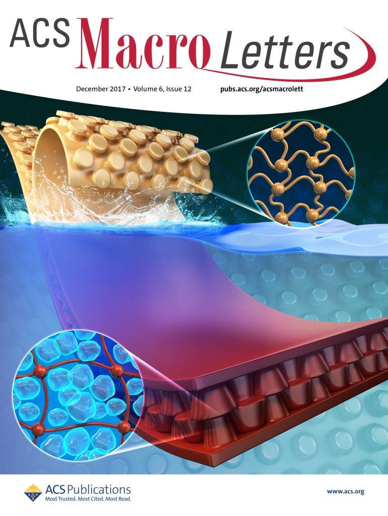 ACS Macro Letters 12월호 표지 그림. 하이드로겔 마이크로후크 어레이는 물 밖에서와 달리, 물속에 들어가면 하이드로겔이 물 분자를 흡수해 팽창하면서 더 강력하게 맞물리게 된다.