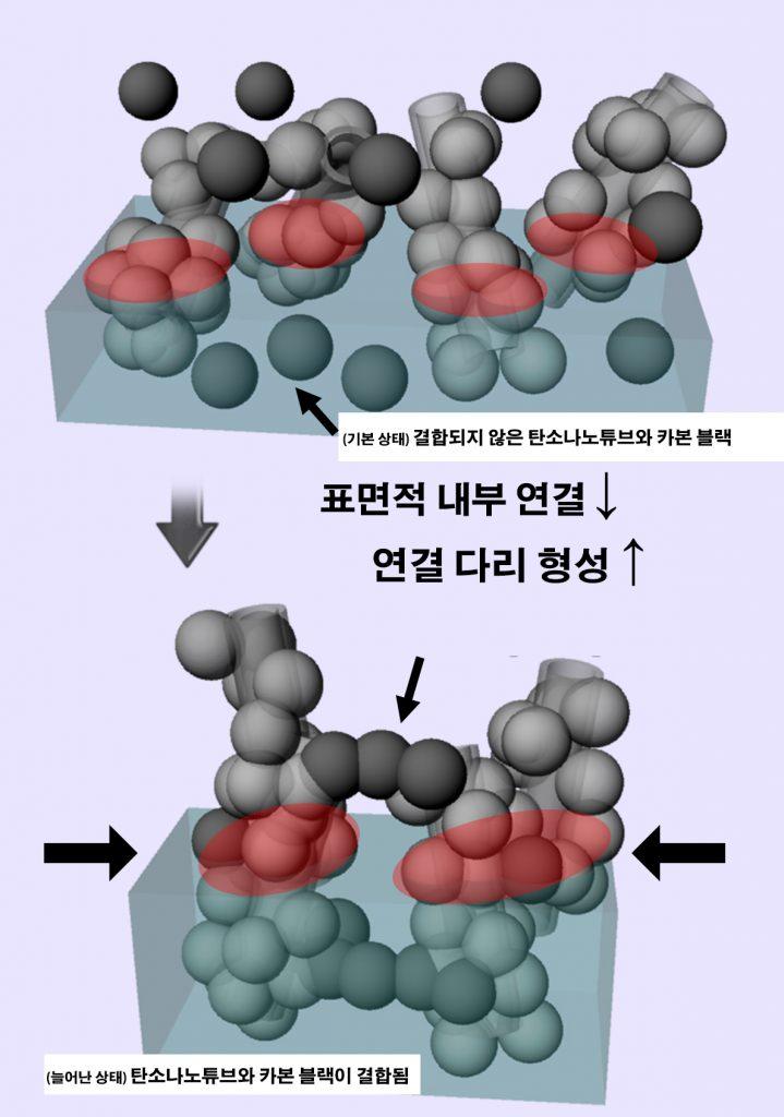 엑스선 소각 산란 실험을 통해 확인한 메커니즘