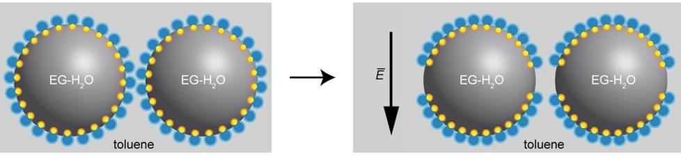 전기장이 나노 계면활성제 액체방울을 결합하는 원리