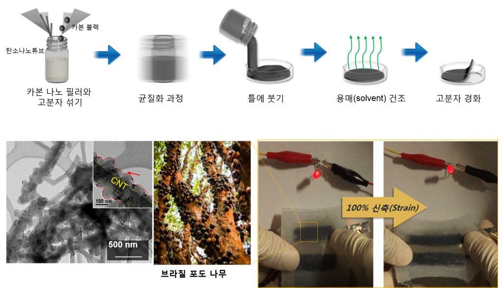 자보티카바 모사한 고분자 재료와 제조 과정