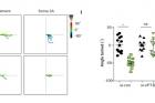 연구그림-뇌-신경세포의-축삭돌기-말단의-회전-능력.jpg