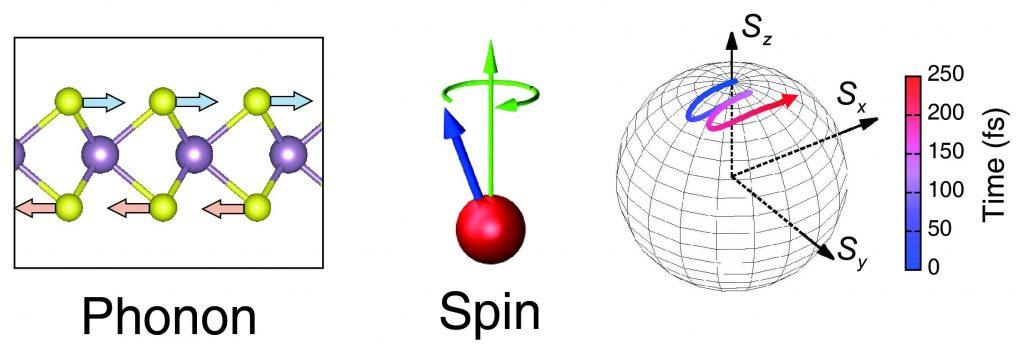 왼쪽 그림은 단층 몰리브덴황(MoS2 )이며, 황 원자(연두색)와 몰리브덴(보라색) 원자가 결합된 구조를 하고 있다. 적외선 편광을 쏘아서 황 원자에 포논을 형성시키면 전자의 스핀이 생긴다.