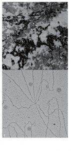 펨토초 레이저 빔 조사 후 형태가 변화 중인 금 나노박막의 시간분해 TEM 이미지(노 출시간 2피코초(전자펄스의 시간폭)와 전자직접검출 카메라를 활용한 DNA 이미지: 김예진 촬영