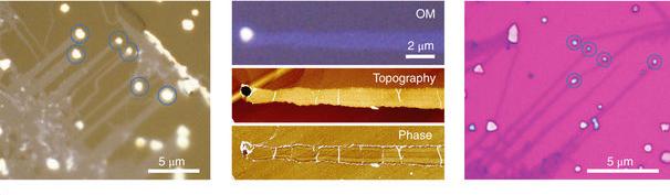 왼쪽은 염화나트륨 결정에서 성장한 이황화몰리브덴 나노 리본의 광학 이미지이고, 가운데는 광학현미경과 원자힘현미경(AFM)으로 형성된 나로 리본의 위상을 보여주는 장면이다. 오른쪽은 산화실리콘 기판 위에 전사된 나노 리본 이미지다. 동그란 부분은 나노 리본에 붙어 있는 마지막 입자를 표시한 것이다.