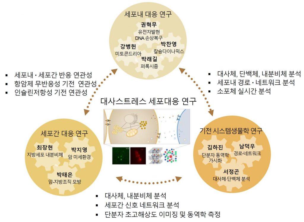 대사스트레스 세포대응 연구센터 연구진과 역할