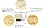 대사스트레스-세포대응-연구센터_참고-그림2.jpg