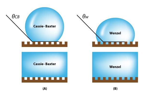 카시-박스터/웬젤 전이(Cassie-Baxter to Wenzel transition): 표면 위 물방울이 공극(cavity) 위에 떠 있는 상태(Cassie-Baxter state)에서 공극까지 완전하게 채운 상태(Wenzel state)로 바뀌는 현상을 말한다.