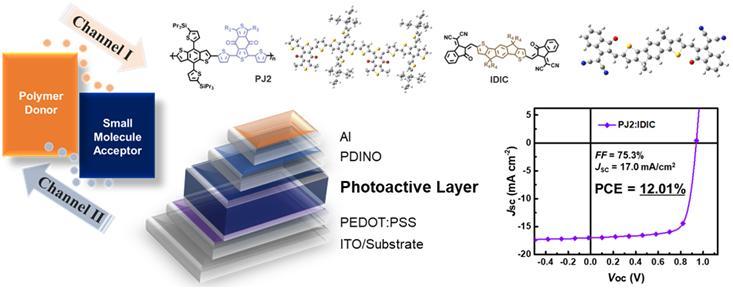 신규 고분자 물질(전자-주개)와 단분자 물질(전자-받개)는 햇빛을 받아 전류를 발생시키는 두 개의 원리(채널Ⅰ, 채널Ⅱ)를 모두 활용할 수 있다. 이번 연구에서 개발한 PJ2(전자-주개)와 IDIC(전자-받개)로 만든 광활성층(Photoactive Layer)를 적용한 유기 태양전지 소자는 12.01%의 효율을 보였다.