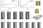 현미경으로-리튬금속전지-내부-관찰.jpg