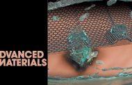 금속방울로 만든 新나노물질, 튼튼한 '그래핀 봉지막'으로 지켜요!