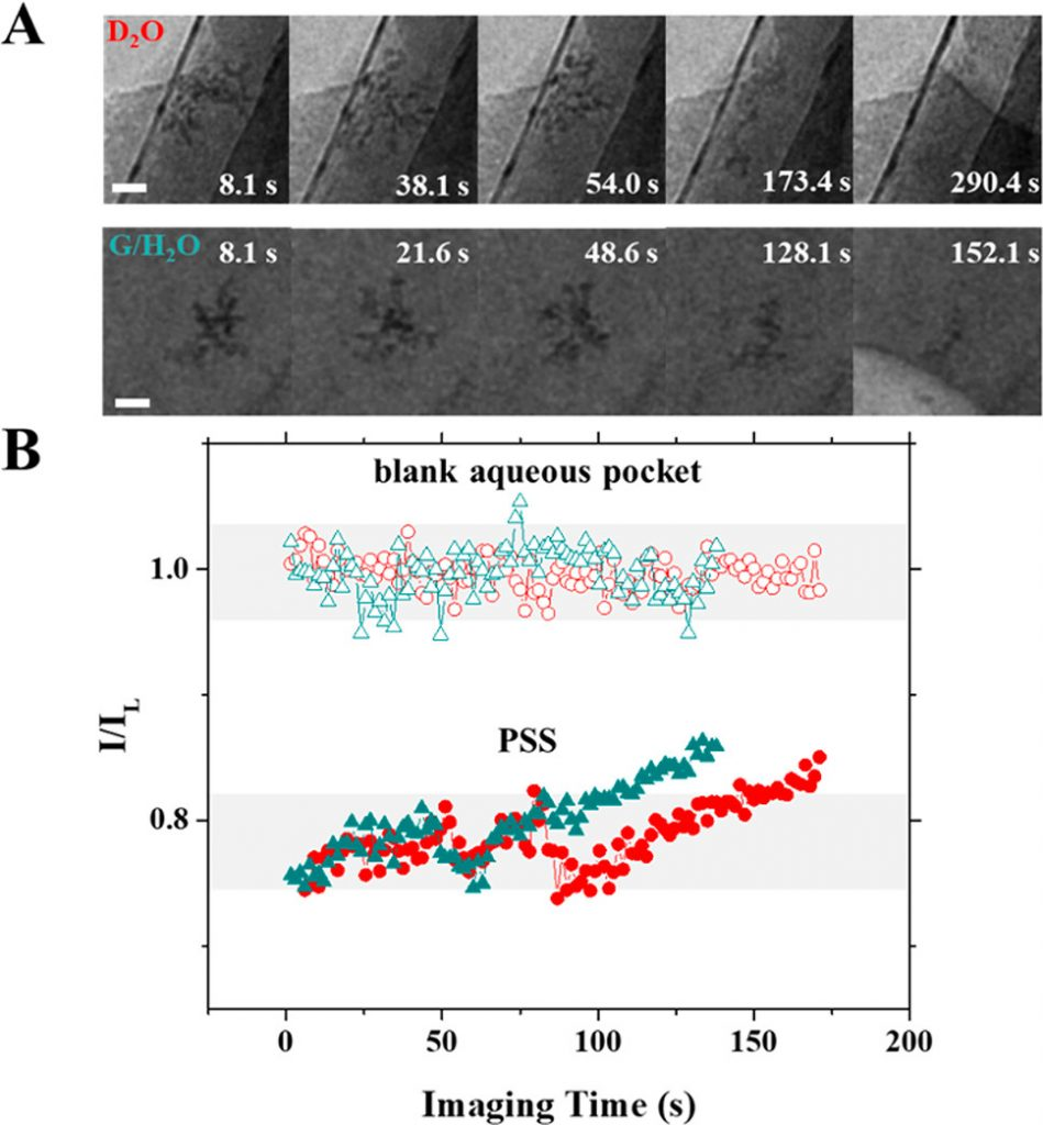 (A) 중수(위)와 글리세롤-물 혼합액(아래)에서의 분자 손상 경과. (B) 시간에 따른 이미지의 평균 밝기 변화.