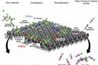 그림1_금속할로젠화물-촉매-이용-저온-실리콘-합성.jpg