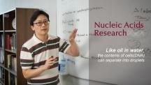 김하진 교수가 DNA 동역학에 대해 설명하고 있다. 김 교수는 물리학적인 원리로 생물현상을 설명하는 젊은 과학자다. | 사진: 김경채