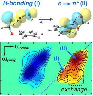 페닐 포메이트 분자를 용매에 녹여 분자 결합 상태를 분석한 그림