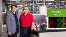 이번 연구를 진행한 강두석 KAIST 연구교수(왼쪽)와 서판길 교수의 모습. | 사진: 김경채
