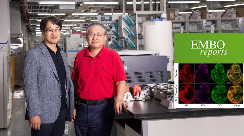 이번 연구를 진행한 강두석 KAIST 연구교수(왼쪽)와 서판길 교수의 모습.   사진: 김경채