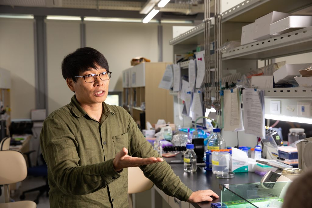 박태주 교수가 실험실에서 연골 형성 과정에 대해 설명하고 있다. | 사진: 김경채