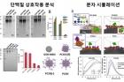 그림2_나노-입자-생체-단백질-간-상호작용-메커니즘.jpg