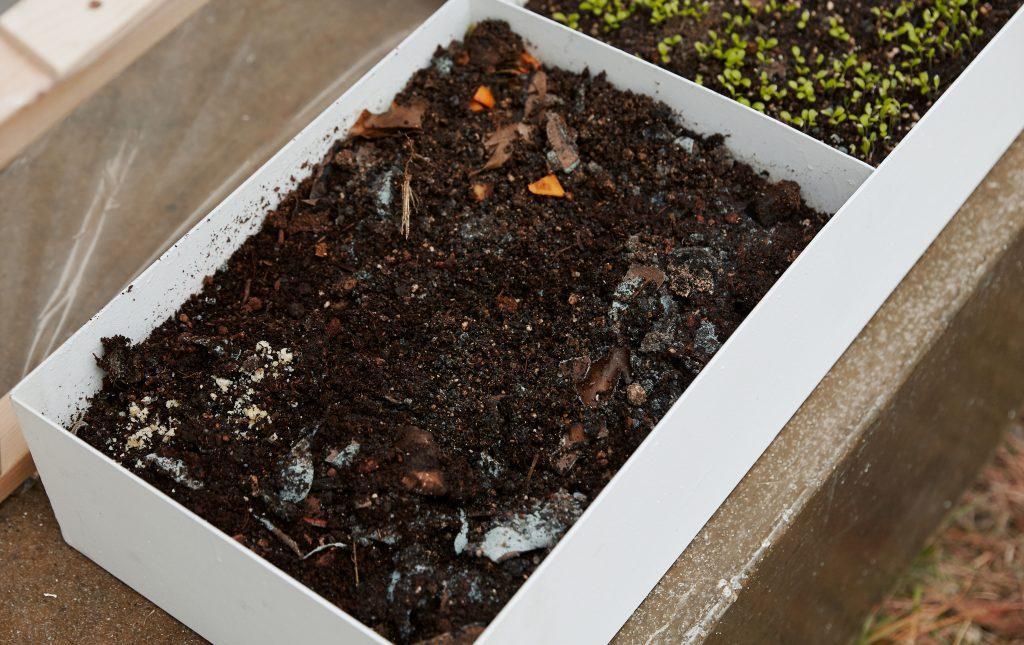 미니 온실에서는 지렁이가 자라고 있다. 여기서도 새로운 순환이 탄생한다. | 사진: 김경채