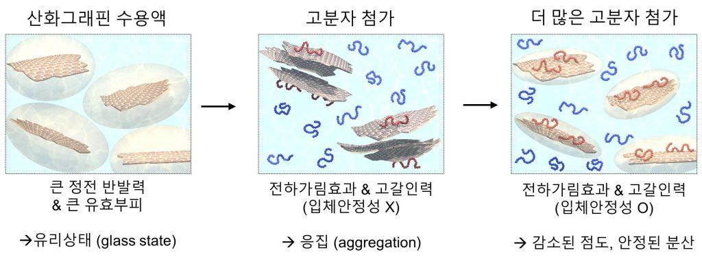 고분자 농도에 따른 산화 그래핀의 유효부피와 분산 모식도