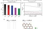 그림-제작된-복합촉매의-산소환원반응ORR에-대한-성능과-DFT-결과.jpg