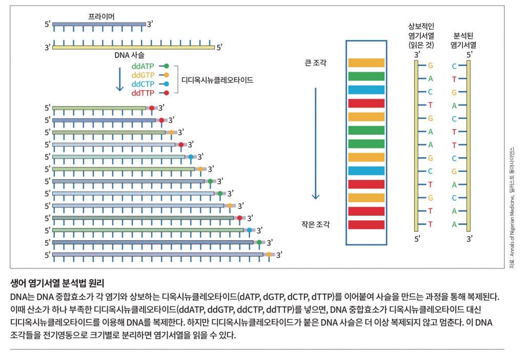 142-145 언니오빠 논문연구소.indd