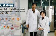 '빛으로 원격제어'… 살아 있는 세포 속 반응 유도하는 PINERs