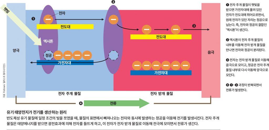 이미지 출처: 과학동아