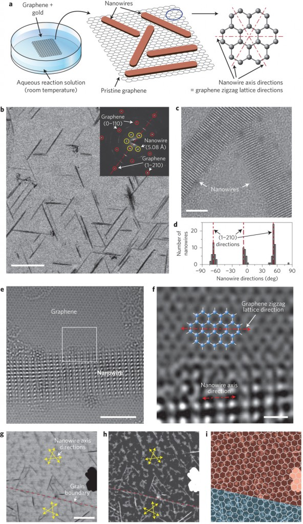 The figure shows the directional growth of inorganic nanowires on graphene. During this incubation, the nanowires grow on the graphene surfaces along the specific lattice directions of the graphene.