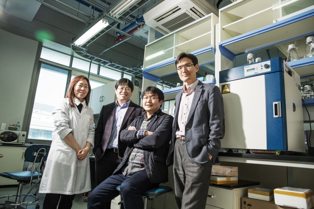 From right are, Prof. Byoung Heon Kang (School of Life Sciences), Prof. Changwook Lee (School of Life Sciences), Prof. Ja Hyoung Ryu (School of Natural Science), and the researcher Hye Kyung Park (School of Life Sciences).