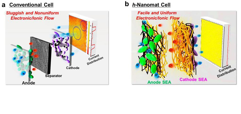 In comparison with conventional cells, 1D nanobuilding block-based SEAs are characterized with highly interconnected, uniform electron pathways and porous structure, thereby providing significant improvements in the electrochemical performance.