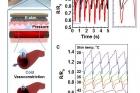 생체모사-전자피부-온도에-따른-맥박-변화-감지.jpg