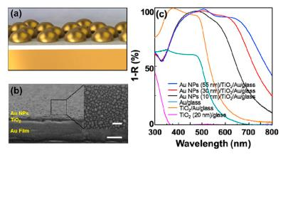 Two-dimensional metastructured film with Titanium Oxide is fabricated as a photo-catalytic photoanode with exceptional visible light absorption.